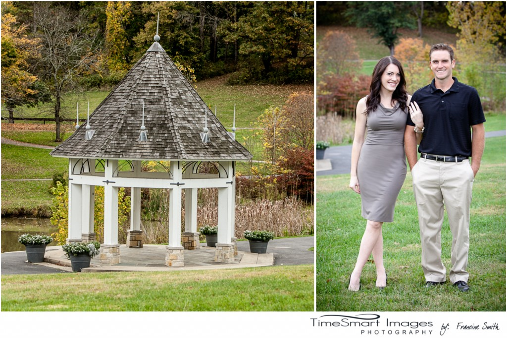 Gazebo Engagement