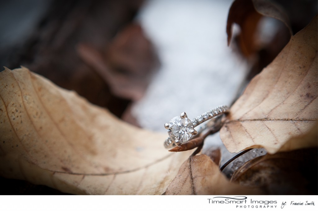engagement ring on leaf in snow