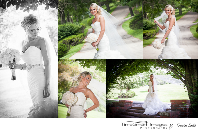 the bride, long veil, gorgeous wedding dress