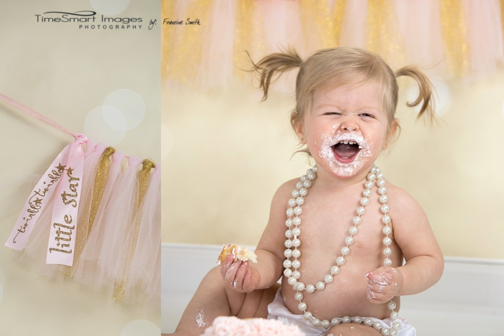 Twinkle Twinkle Little Star_Pink & Gold Theme 1st birthday6_Pittsburgh Photographer